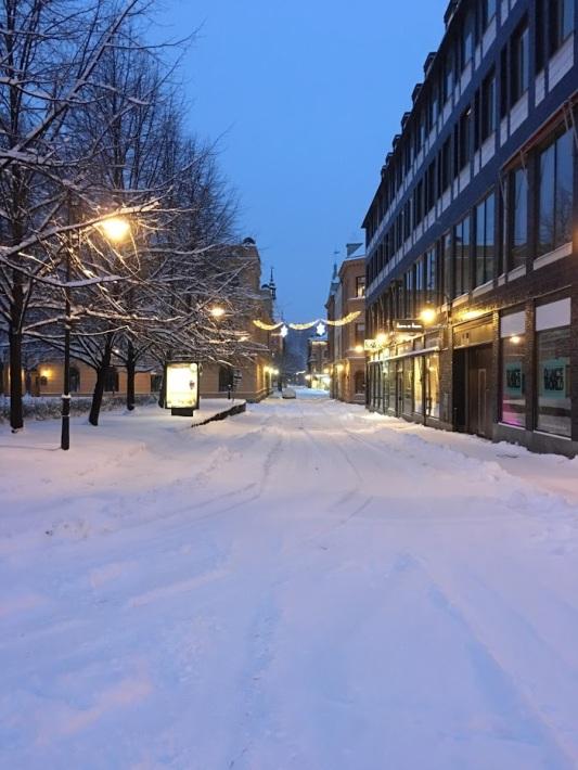 snösundsvall2